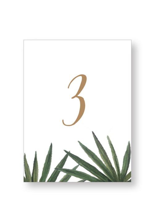 Palm Table Numbers